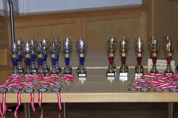 Pokale & Medaillen (ÖM-Schüler)