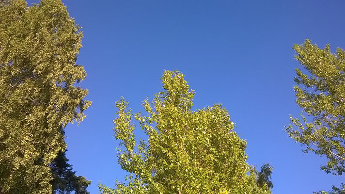 Blue skies in Helsinki, 2017