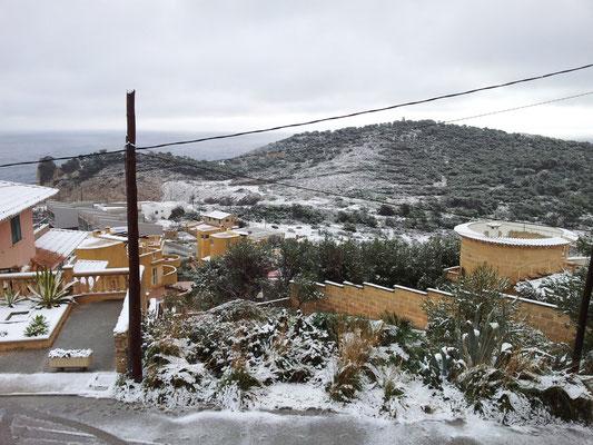 ...auch DAS gibt es auf Mallorca!