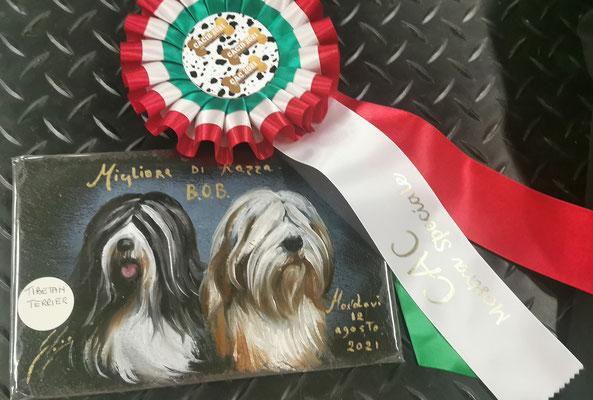 Toller Spezial Preis des Club Cani Campinia für den Besten der Rasse