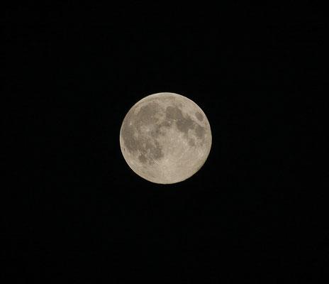 10 août 2014 - la grosse lune ...