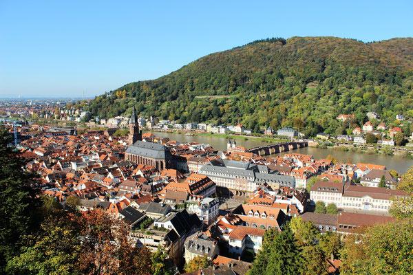 Blick vom Schloss auf die Altstadt.