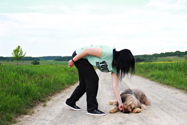Bestätigung durch Hundehalter