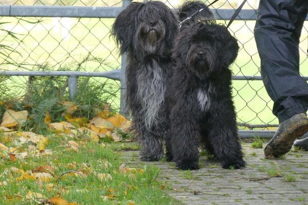 Lucie & Bailey