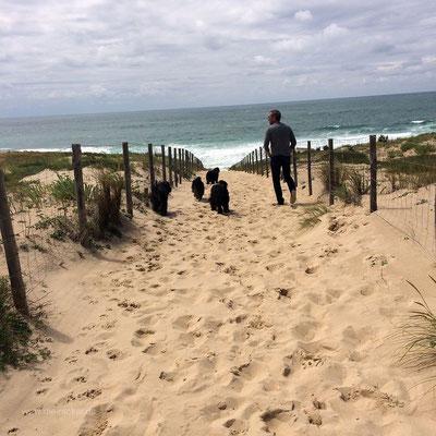 """Weg zu """"unserem Strand"""""""