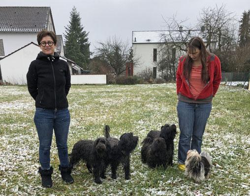 Bailey, Lucie, Benita, hinten Enny, Rocco