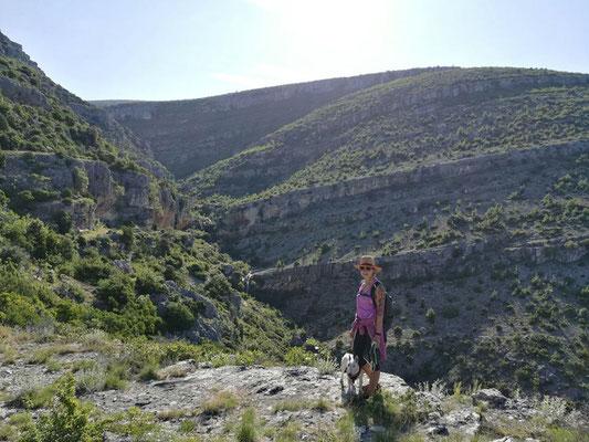 Jennifer beim Wandern mit dem tauben Minibullterrier Lotti.