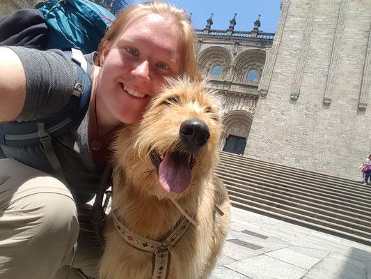 Jakobsweg mit Hund- in Santiago