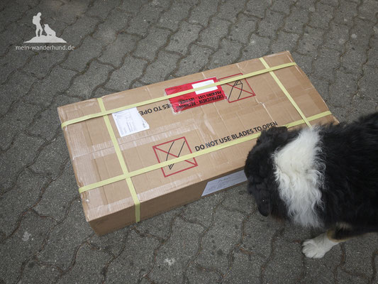 Test Tami Hundebox: Auspacken
