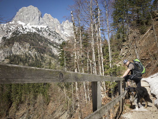 Bike & Hike mit Hund zur Bindalm: An der Klamm entlang.An der Klamm entlang.
