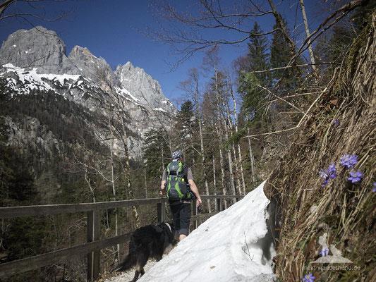Bike & Hike mit Hund zur Bindalm: An der Klamm entlang.