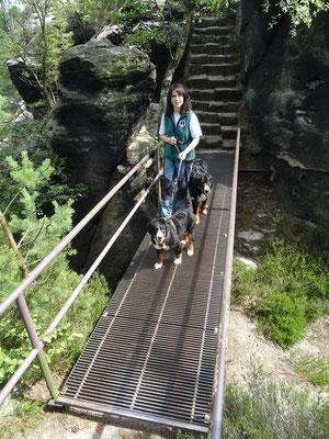Wandern mit mehreren Hunden: Franzi und ihre zwei Berner Sennen.