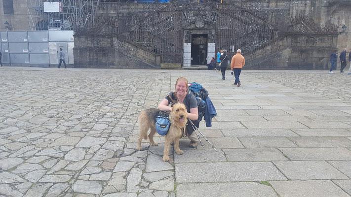 Jakobsweg mit Hund - Kathedrale von Santiago