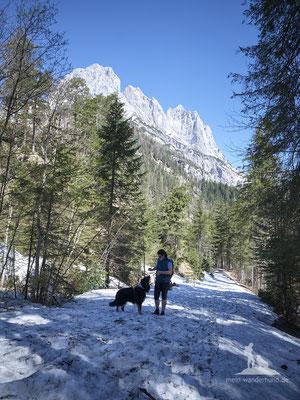 Bike & Hike mit Hund zur Bindalm: Ab hier gehts zu Fuß weiter.