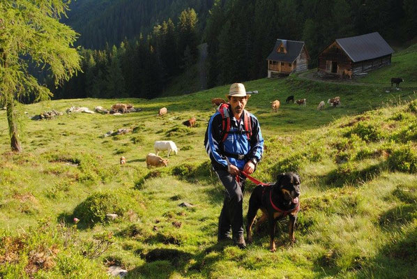 Wandern mit Kampf- und Herdenschutzhund.