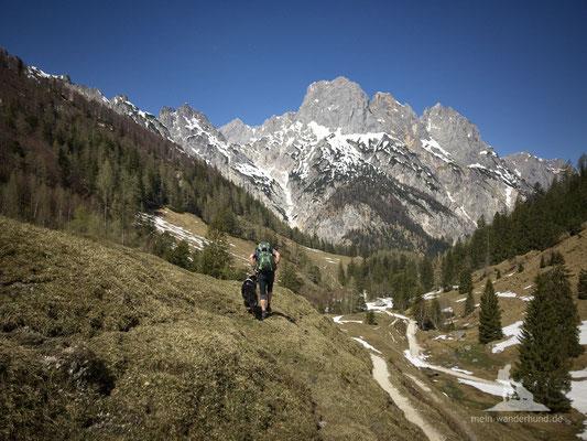 Bike & Hike mit Hund zur Bindalm:  Zurück gehts über den Wanderweg.