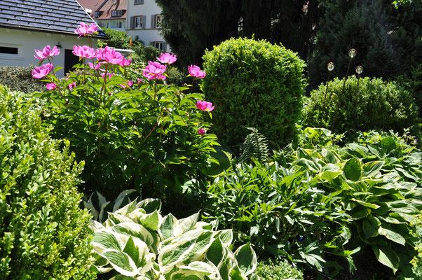 Gartengestaltung Hüfingen und Bräunlingen