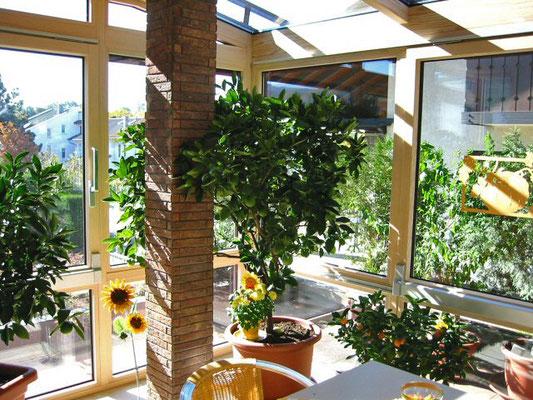 Wintergarten Holz Alu Steinbach