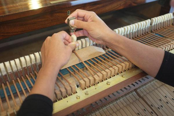 harmonisation des peaux
