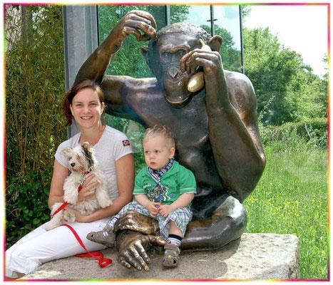 ein Ausflug mit Biewer-Yorkshire-Hündin Evelina in den Tierpark München
