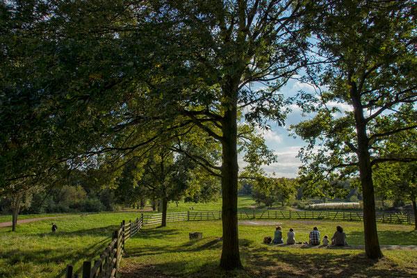 Tag 120_Familienausflug in den Südpark 27.09.2014