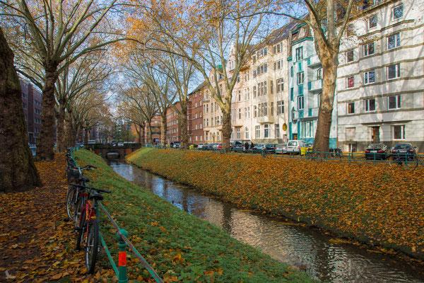 Tag 164_Die Düssel in Bilk 10.11.2014