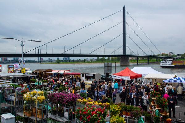 Tag 338_Fischmarkt 03.05.2015
