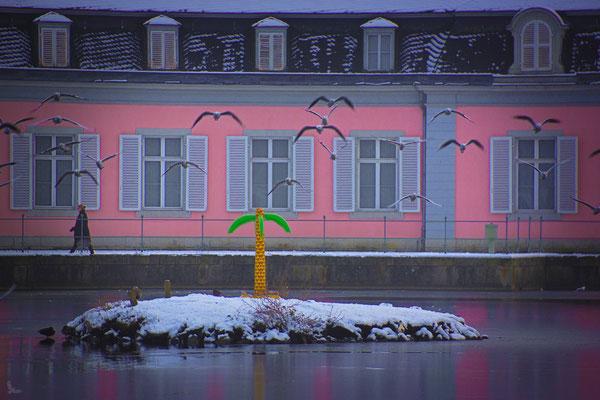 Tag 239_Die Schlosspalme 24.01.2015