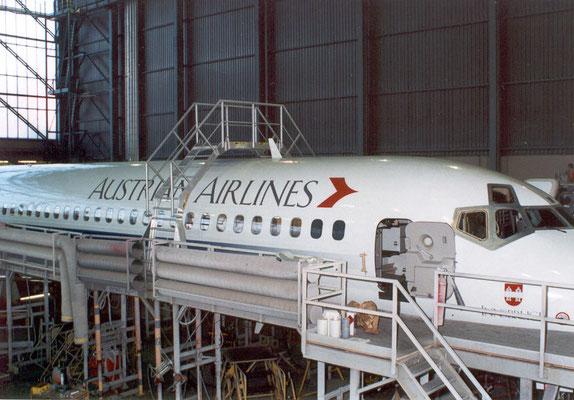 Wartungsbühne für Flugzeugrevision