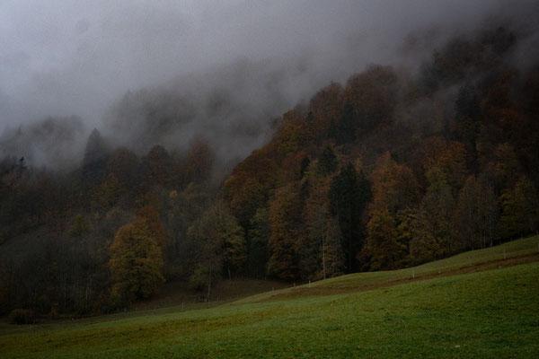 Nebelstimmung im Tal bei Oberstdorf