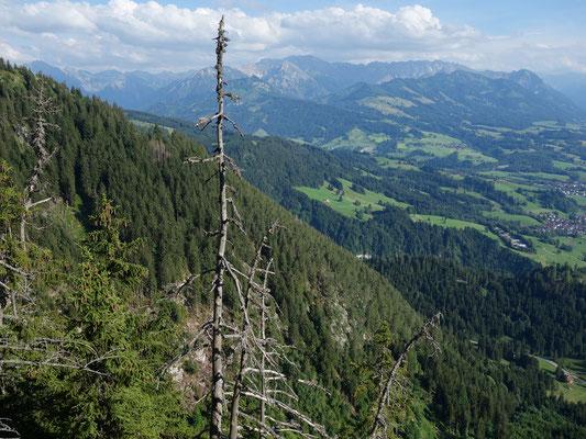 Toller Ausblick auf Allgäuer Berge
