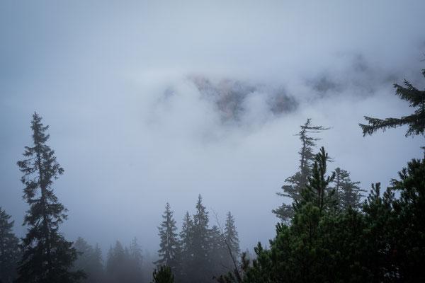 Wir sind irgendwann außerhalb des Nebels