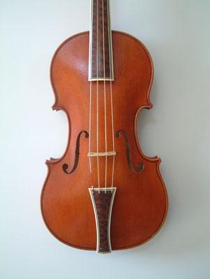 violino Stradivari Mediceo, tavola