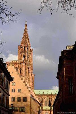 Strasbourg Cathédrale Nicolas Rosès Photographe