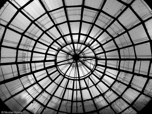 FIVE DAYS IN PARIS 37 Nicolas Rosès Photographe