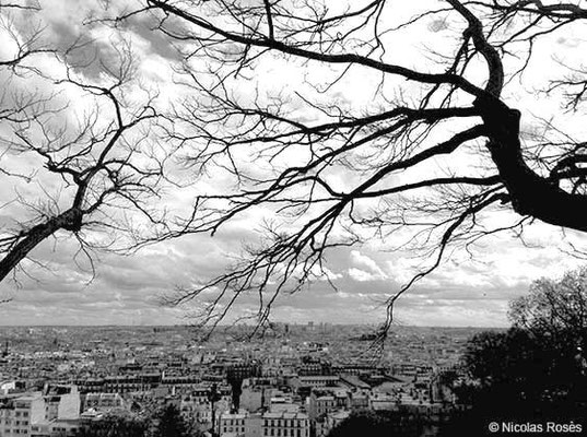 FIVE DAYS IN PARIS 56 Nicolas Rosès Photographe