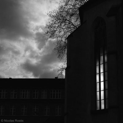 Contre jour Strasbourg Nicolas Rosès Photographe