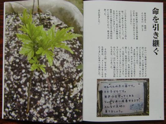 お知らせ - cs-iwato ページ!