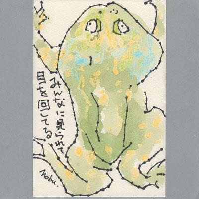 0802 カエル