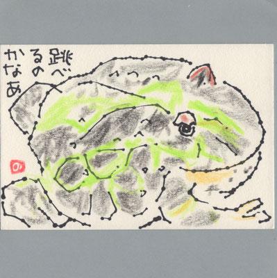 0801 カエル
