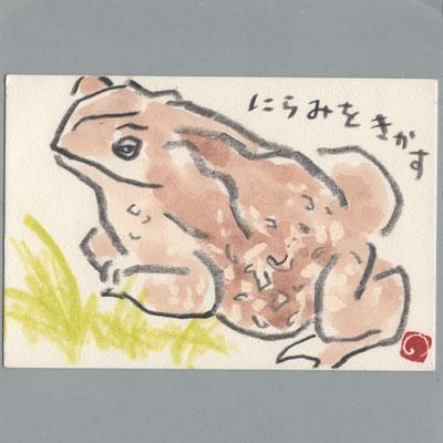 0809 カエル