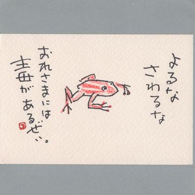 0806 カエル