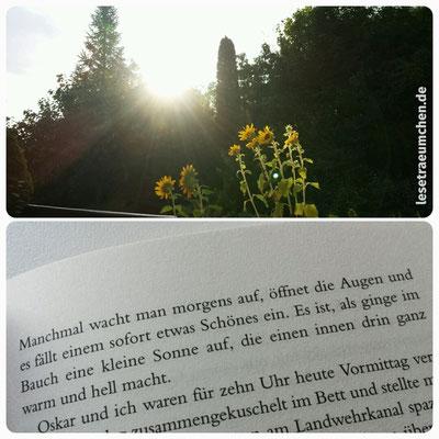 """Morgensonne und sofort das passende Zitat im Kopf. Zitat aus """"Rico, Oskar und die Tieferschatten"""" von Andreas Steinhöfel"""
