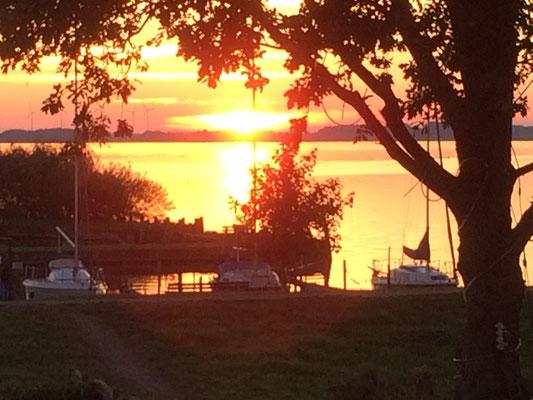 Sonnenuntergang am Dümmersee