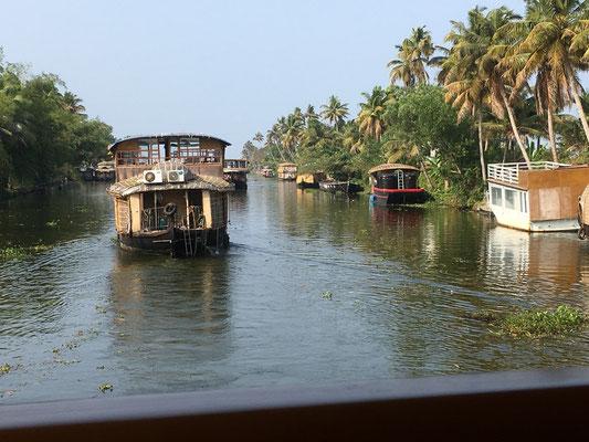 Auf einem Kanal in den Backwaters