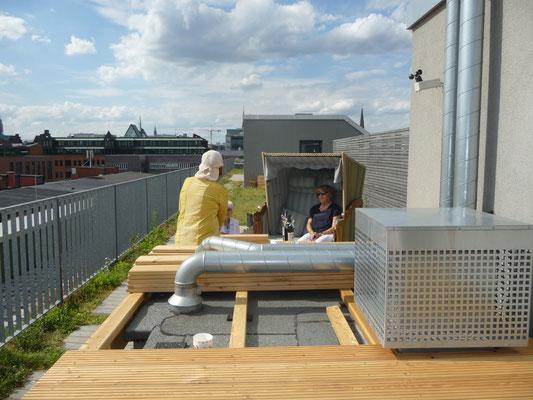 Der Dachgarten wird gestaltet