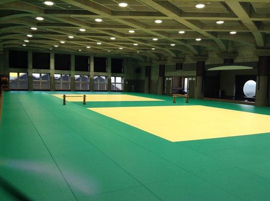Die Trainingsfläche des Tokyo Budokan.