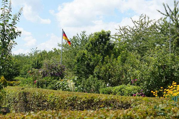 Deutschlandfahne in einer Kleingartenanlage.