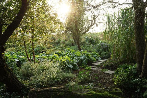Außerhalb von Schapdetten angelegter und bewirtschafteter Garten.