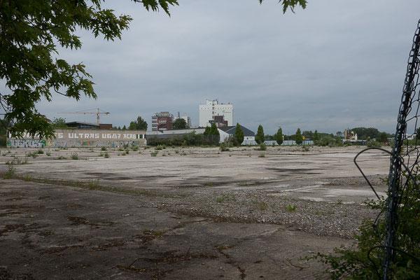 Brachfläche in einem Industriegebiet in Münster